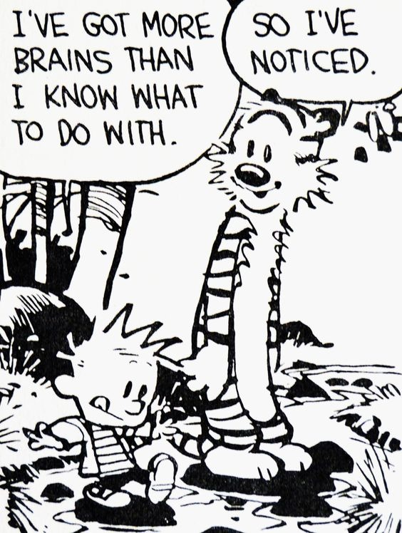 [calvin+more+brains+than+I+know+what+to+do+with%5B4%5D]