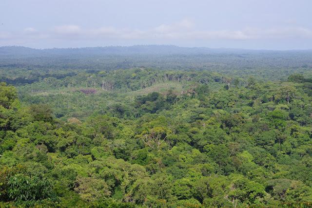 Le panorama depuis Bellevue. Cacao, 28 octobre 2012. Photo : J.-M. Gayman