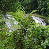 Cascade du Rio Llanito, route de Santa Fe à Guabal, 350 m (Veraguas, Panamá), 19 octobre 2014. Photo : J.-M. Gayman