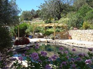 Quinta dos Lirios Algarve villa for rent