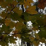 Barwy jesieni cz. 5: Uroczysko Wielkanoc