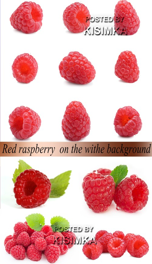 Stock Photo: Red raspberry on the white background