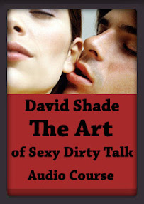 Cover of David Shade's Book The Art Of Sexy Dirty Talk.mp3
