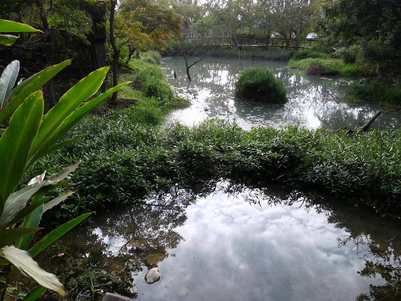 TAIWAN.Taipei. Dans le jardin de lune des nombreuses résidence présidentielle de CKS - P1050063.JPG