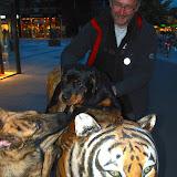 KNON-honden in Emmen - DSC_0839.jpg