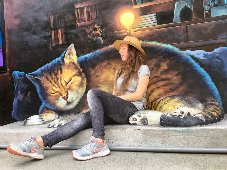 cats on the roof huwei yunlin taiwan painted village amwf couple
