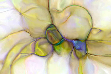 """The """"Seed Pods"""" piece from the """"2004"""" collection"""