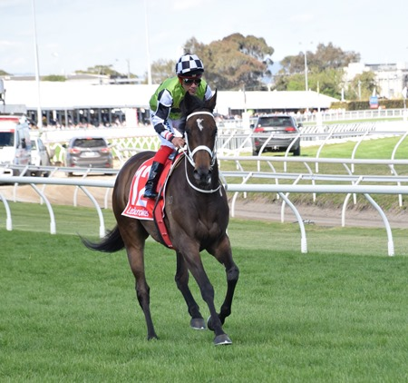 caulfield stakes_unforgotten 1