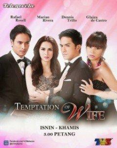 Mặt Nạ Hoa Hồng - Temptation of Wife (2013)