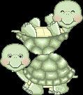 tortugas.jpg