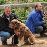 20130630 Auftritt Fenkensees von (Uwe Look) - DSC_4087.JPG