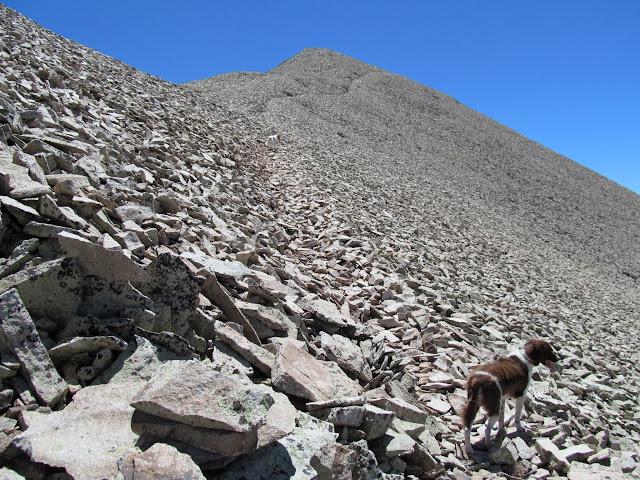 Trail through the talus
