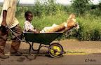 Sur le chemin de l'école, au Mozambique