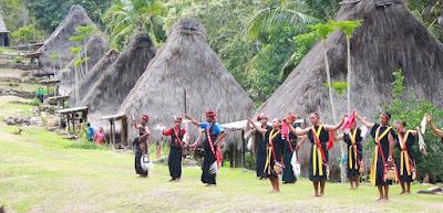 In posebna plemena