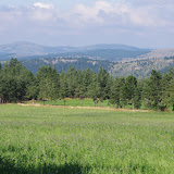 Sentier des menhirs (1060 m), Les Bondons (Lozère), 10 août 2013. Photo : J.-M. Gayman