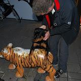 KNON-honden in Emmen - DSC_0825.JPG