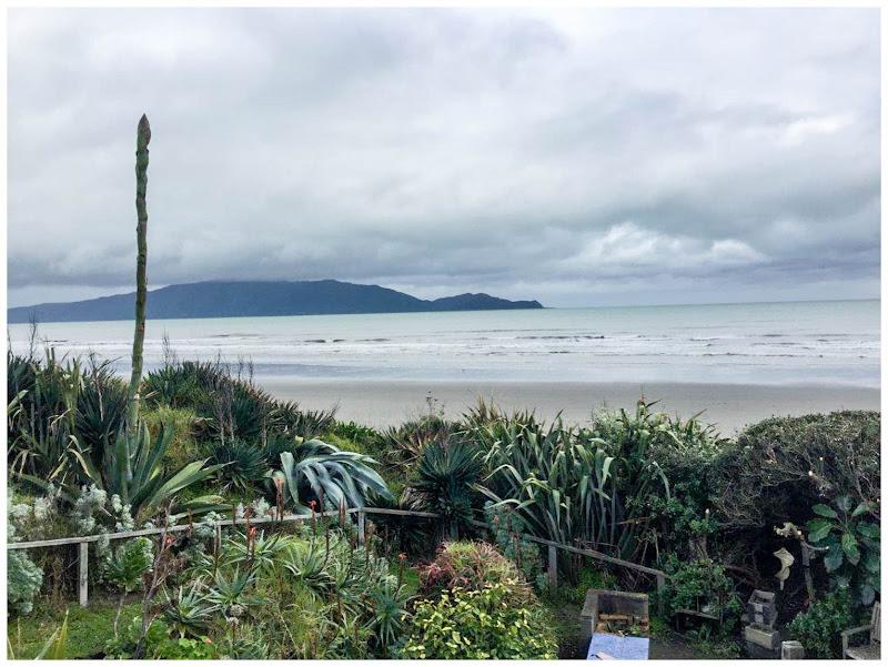 NZ_waikanae