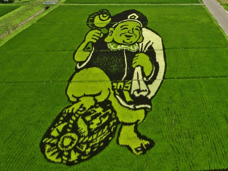 japanese-rice-paddy-art-9