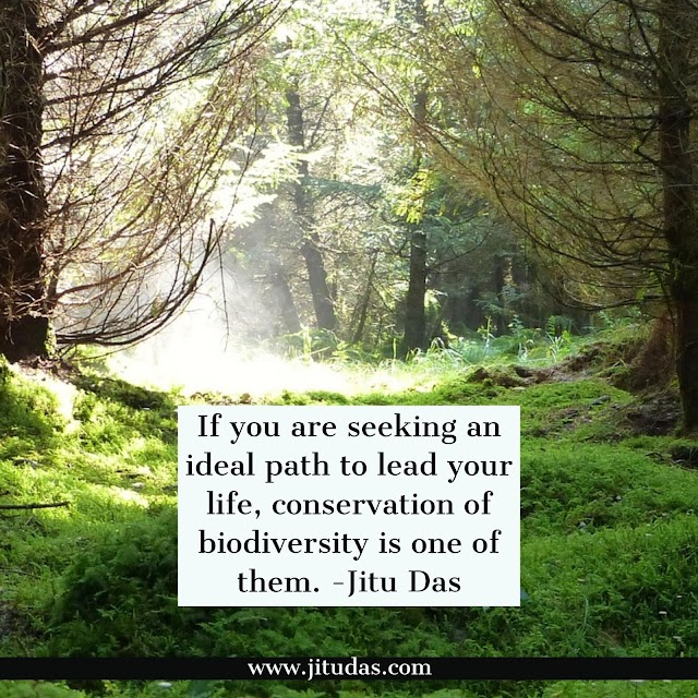 Conservation of biodiversity quotes by Jitu Das philosophy quotes 2018