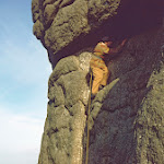 1977_42 Paul Wallace, Zig Zag, Haytor - Copy.jpg