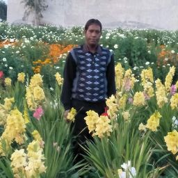 user Balvir Chand apkdeer profile image