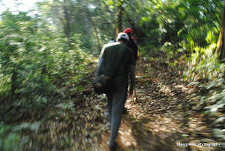 Photo: Jungle on the way to Makrandgad...