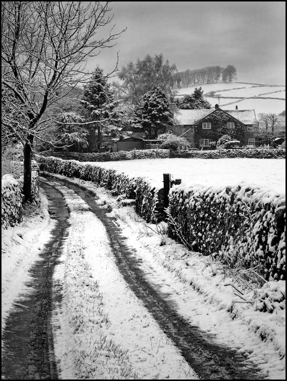 Back-Lane-Snow