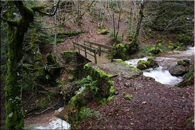 Puente de madera sobre el barranco de Espata