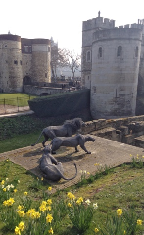 A tourist day in London: having lived in London for almost 6 months now we decided we needed to get to know the city better and what better way to do it than be tourists!  Wire lions outside of the Tower