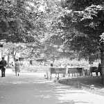 sl_250_020_Проспект Лєніна 1960-ті.jpg