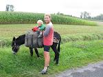 Joris op een bepakte ezel vlak bij Mt-St-Michel