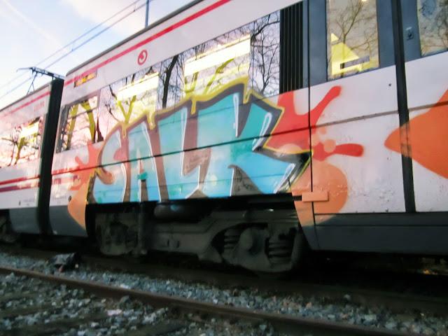 salk (8)