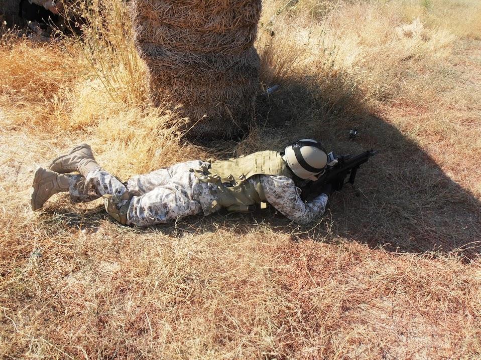 """Fotos de """"Operación Granja"""". 25-08-13. P8250039"""