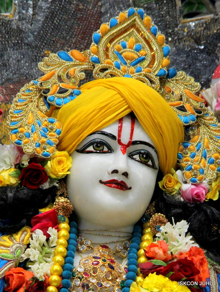 ISKCON Juhu Sringar Deity Darshan 22 Nov 2016 (50)