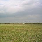 2012 6 Iunie 008.jpg