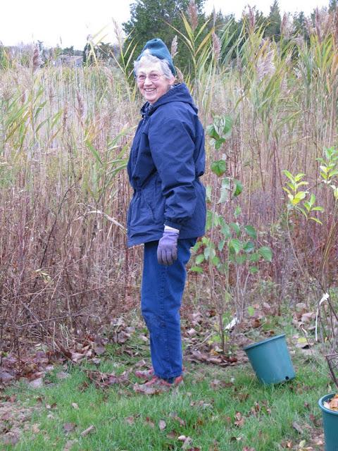 Hammo Planting - Shannon Schiesser - IMG_4889.JPG