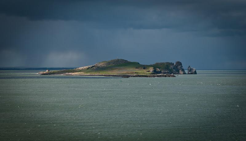 Irlandia -- klify na półwyspie Howth..