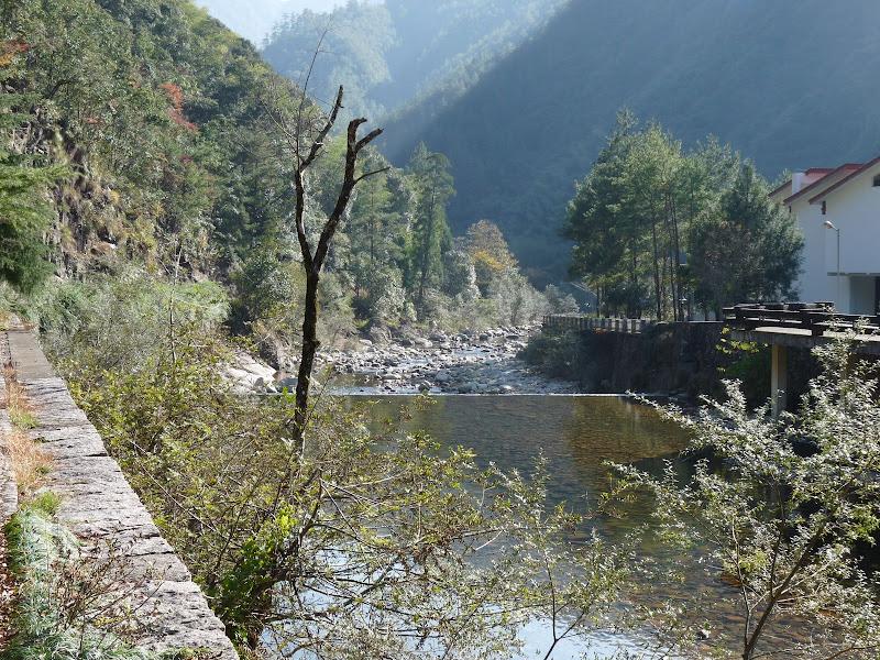 Chine .Fujian.Wuhi shan B - P1030212.JPG