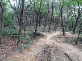 진관공원길