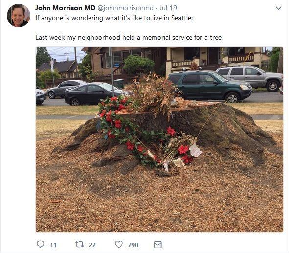 [seattle+memorial+for+tree%5B3%5D]