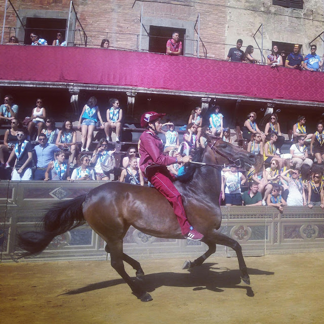 Torre's jockey Brio winning the July Palio 2015 on Morosita Prima