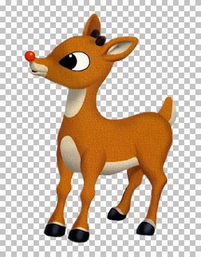 GG_Rudolph_Rudolph.jpg