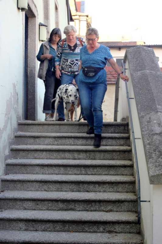 7. Juni 2016: On Tour in Neustadt a.d. Waldnaab - Neustadt%2Ban%2Bder%2BWaldnaab%2B%252810%2529.jpg