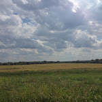 Scott_Koertner-Katy_Trail_Fieldscape.jpg