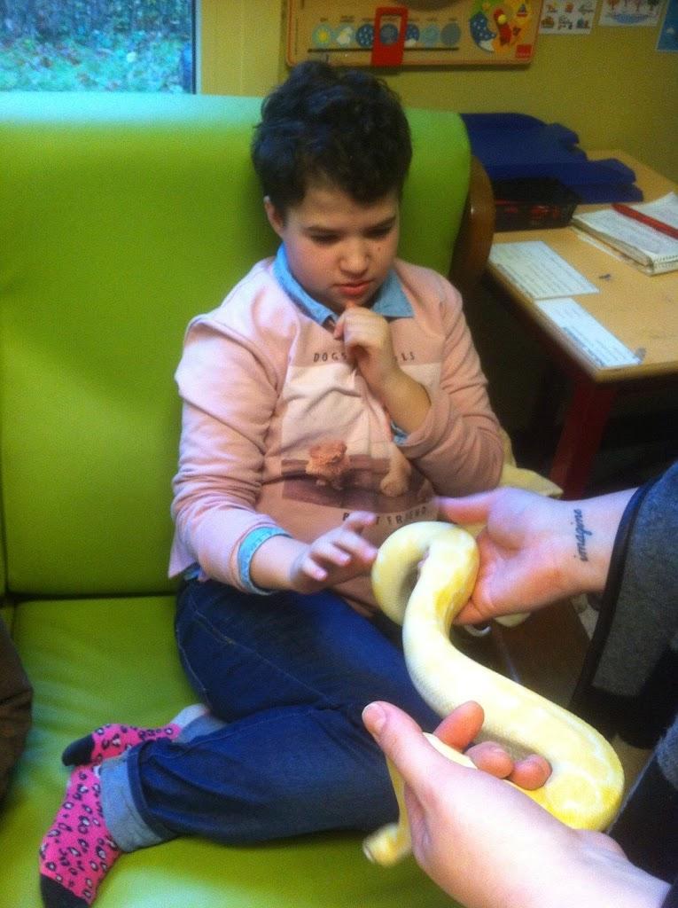 Slangen op bezoek bij de Kikkers - IMG_9231.JPG