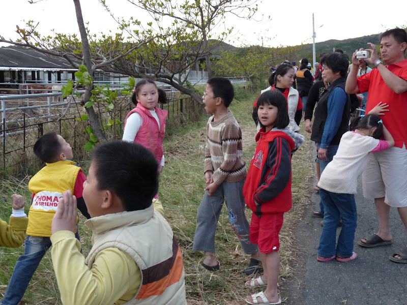 TAIWAN. Cinq jours en autocar au sud de Taiwan. partie 1 - P1150234.JPG