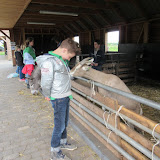 Welpen - Kinderboerderij & Crossbaan - IMG_2497.JPG