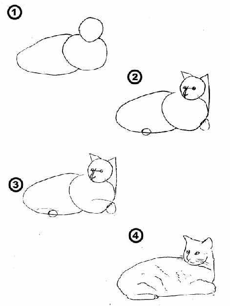 طريقه رسم القطه في ٤ خطوات سهله مدونة بحث نت