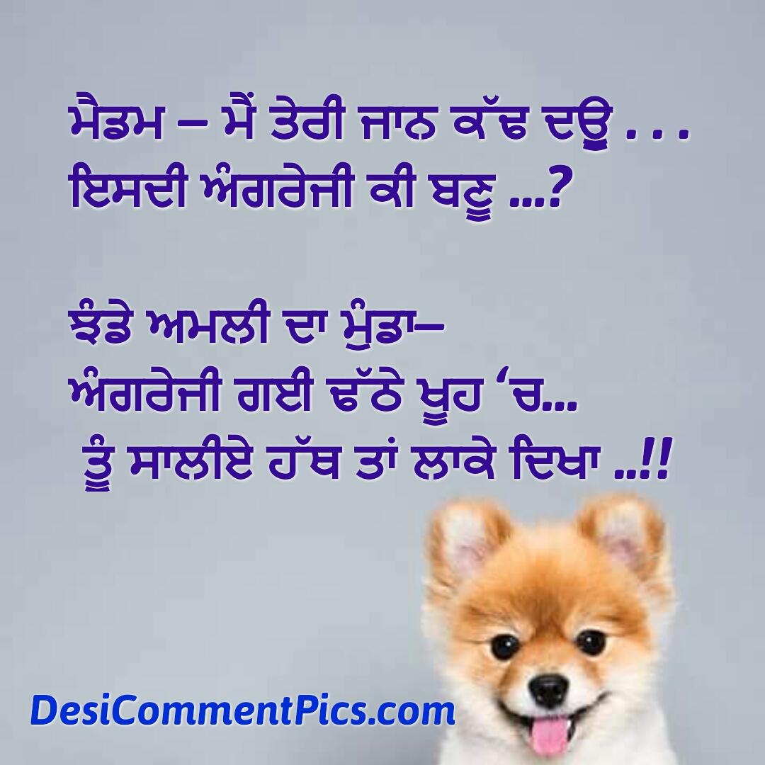 Jhadhe Amli Da Munda Punjabi Joke Image For Whatsapp Pinterest Instagram Facebook Punjabi Desi Comments On Images Funny Joke On Images