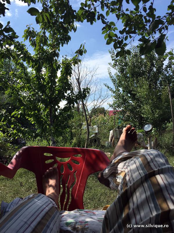 2015.08.18 – Acasa la Garoafa
